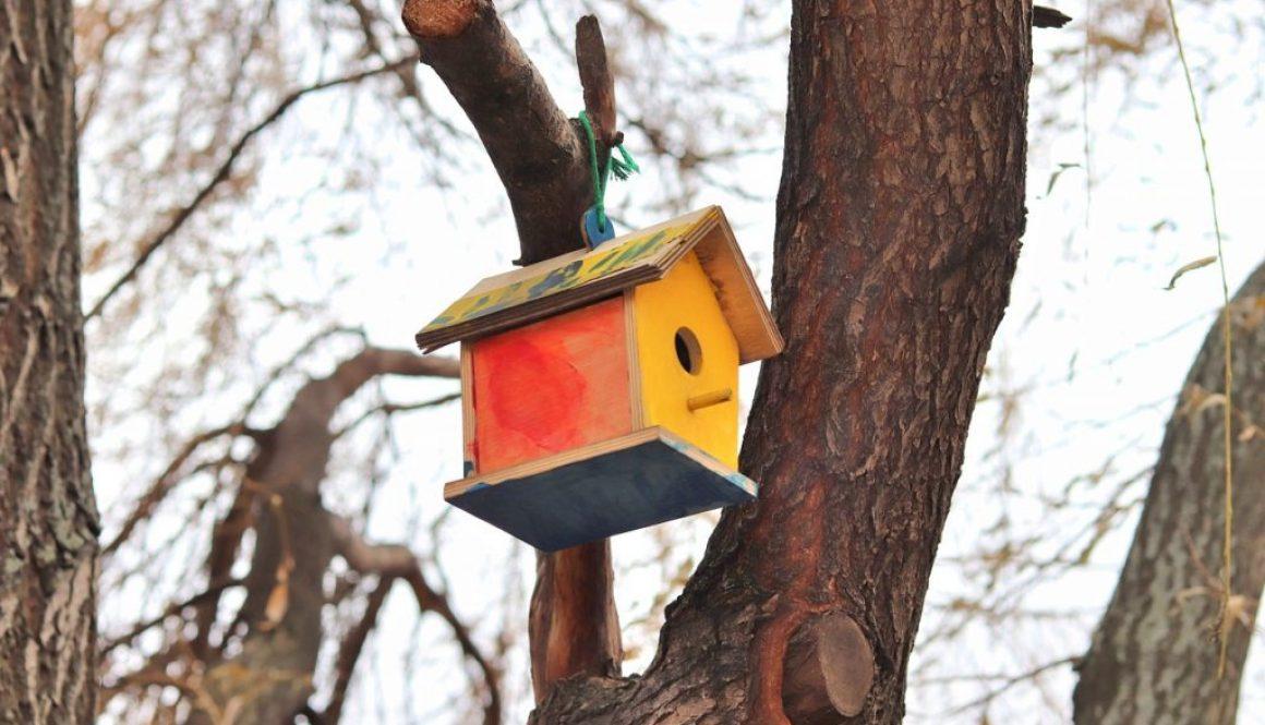birdhouse-4763495_1280